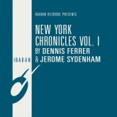 dennis-ferrer-jerome-syden-new-york-chronicles-vol-1-ibadan-cover