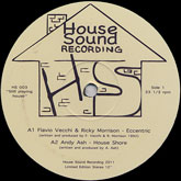 andy-ash-deymare-fabio-eccentric-house-shore-house-sound-cover