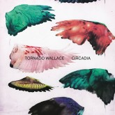 tornado-wallace-circadia-esp-institute-cover