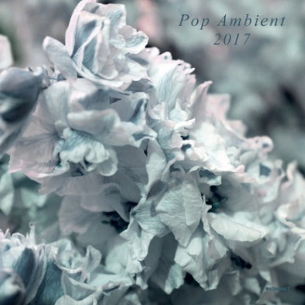 various-artists-pop-ambient-2017-lp-kompakt-cover