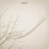 sven-weisemann-falling-leaves-gigi-masin-fauxpas-musik-cover