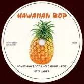 etta-james-boogaloo-his-somethings-got-a-hold-on-me-hawaiian-bop-cover