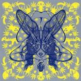 the-bug-ganja-baby-acid-ragga-cover