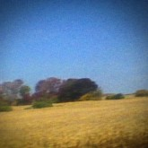 sun-kil-moon-benji-cd-caldo-verde-cover