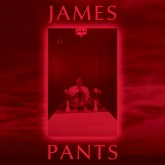 james-pants-james-pants-cd-stones-throw-cover