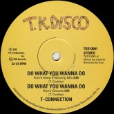 t-connection-jimmy-mcgr-do-what-you-wanna-do-tailgunne-tk-disco-cover