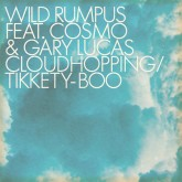 wild-rumpus-feat-cosmo-gary-cloud-hopping-tikkety-boo-bitches-brew-cover