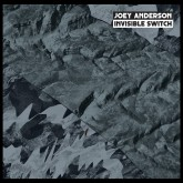 joey-anderson-invisible-switch-lp-dekmantel-cover