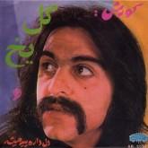 kourosh-yaghmaei-gole-yakh-del-dareh-pir-mis-now-again-cover