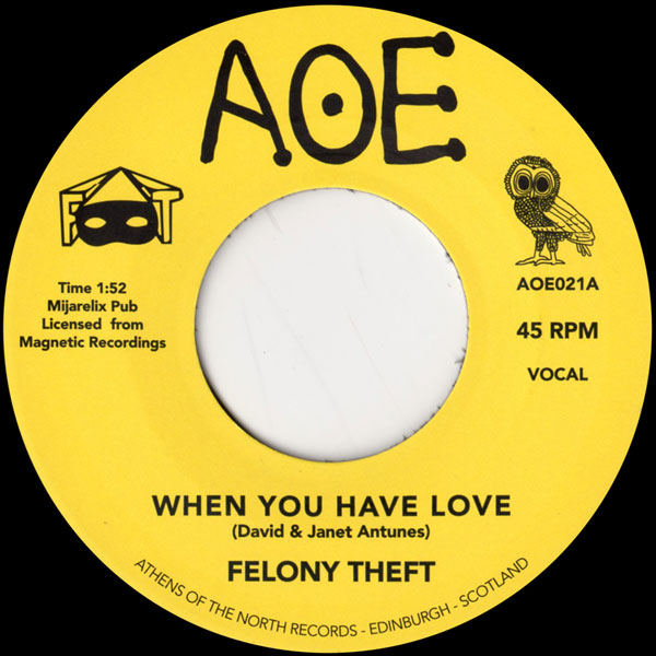 felony-theft-when-you-have-love-aoe-cover