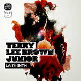 terry-lee-brown-jnr-labyrinth-lp-plastic-city-cover