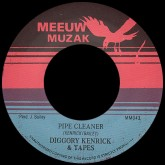 diggory-kenrick-tapes-pipe-cleaner-this-weeds-making-meeuw-muzak-cover