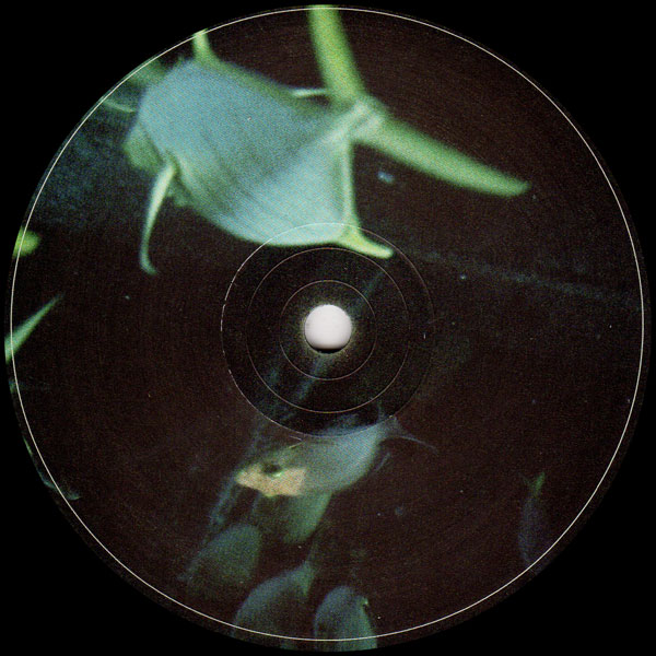 udmo-open-water-analogue-attic-cover