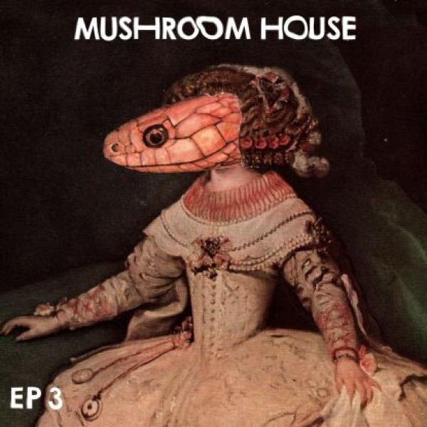 red-axes-kiwi-various-arti-mushroom-house-ep-3-toy-tonics-cover