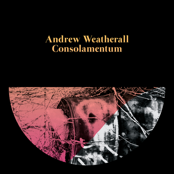 andrew-weatherall-consolamentum-cd-rotters-golf-club-cover
