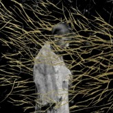 forest-swords-engravings-cd-triangle-cover