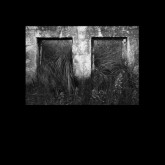 cristi-cons-dewalta-infinity-meander-cover