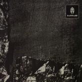 hvl-voiski-vril-zesk-bas-001-bassiani-cover