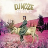 dj-koze-amygdala-lp-pampa-records-cover