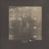 elohim-terrarium-ngly-remix-vox-populi-cover