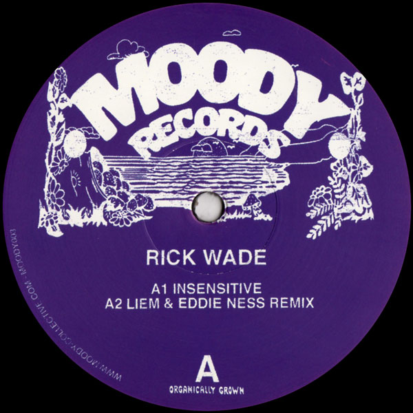 rick-wade-insensitive-holdin-on-liem-moody-records-cover