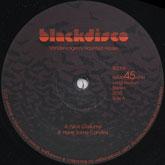 justin-van-der-volgen-vandervolgens-haunted-ho-blackdisco-cover