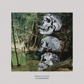 personal-mythologies-los-dinosaurios-hooded-records-cover