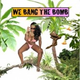 various-artists-we-bang-the-bomb-light-sounds-dark-cover