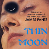 james-pants-thin-moon-chip-in-the-h-stones-throw-cover
