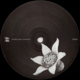 chevel-blurse-remixed-paula-temple-stroboscopic-artefacts-cover