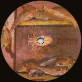roman-iv-la-paloma-running-back-cover
