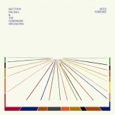 matthew-halsall-the-gondwana-into-forever-lp-gondwana-records-cover