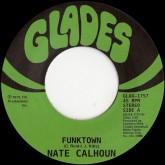 nate-calhoun-funktown-have-some-of-me-glades-cover