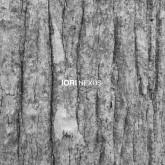 iori-nexus-cd-bitta-cover