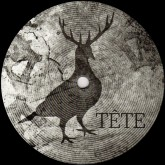 gianmaria-coccoluto-the-travel-of-the-elephant-tete-records-cover