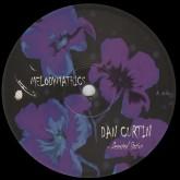 dan-curtin-va-desert-station-melodymathics-cover