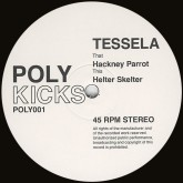 tessela-hackney-parrot-helter-skel-poly-kicks-cover