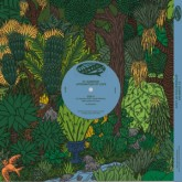 cl-dawkins-affirmation-of-love-amp-fiddler-pomalo-cover