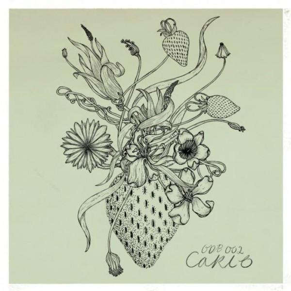 carlo-azizi-ep-organic-downbeat-cover