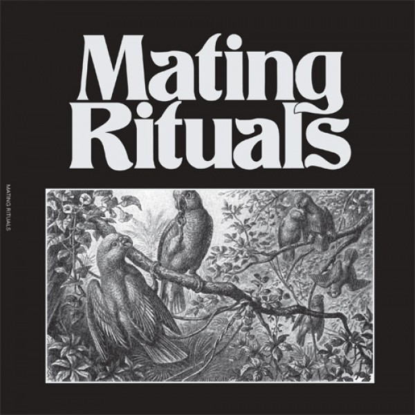 martin-hayes-black-pepper-ep-mating-rituals-cover