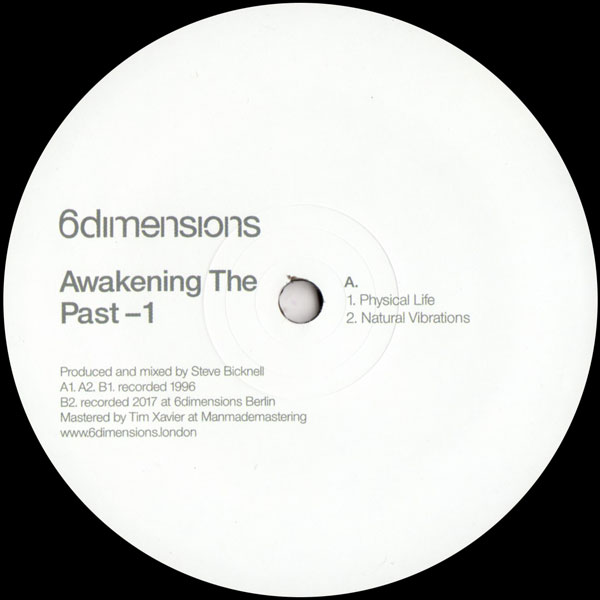 steve-bicknell-awakening-the-past-1-6-dimensions-cover