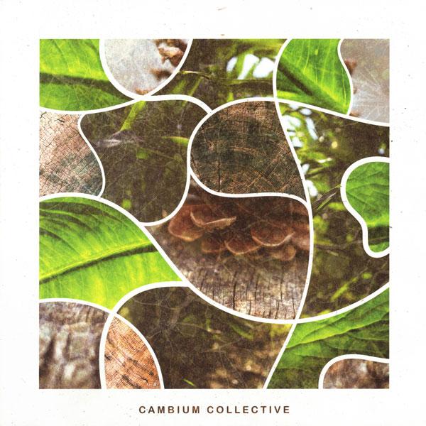 vicari-still-be-there-unco-geno-cambium-collective-cover