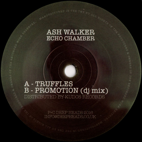 ash-walker-echo-chamber-deep-heads-cover