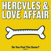 hercules-love-affair-do-you-feel-the-same-andy-moshi-moshi-cover