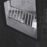 regis-regis-1994-1996-cd-downwards-cover