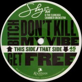 sly5thave-the-clubcasa-chamber-bitch-dont-kill-my-vibe-get-kooyman-records-cover