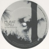 murat-tepeli-in-the-mood-for-philpot-cover