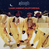 the-pharcyde-labcabincalifornia-lp-bicycle-cover