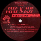 chris-shivers-various-arti-deep-house-vs-acid-jazz-volume-intangible-records-cover