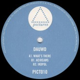 dauwd-whats-there-pictures-music-cover
